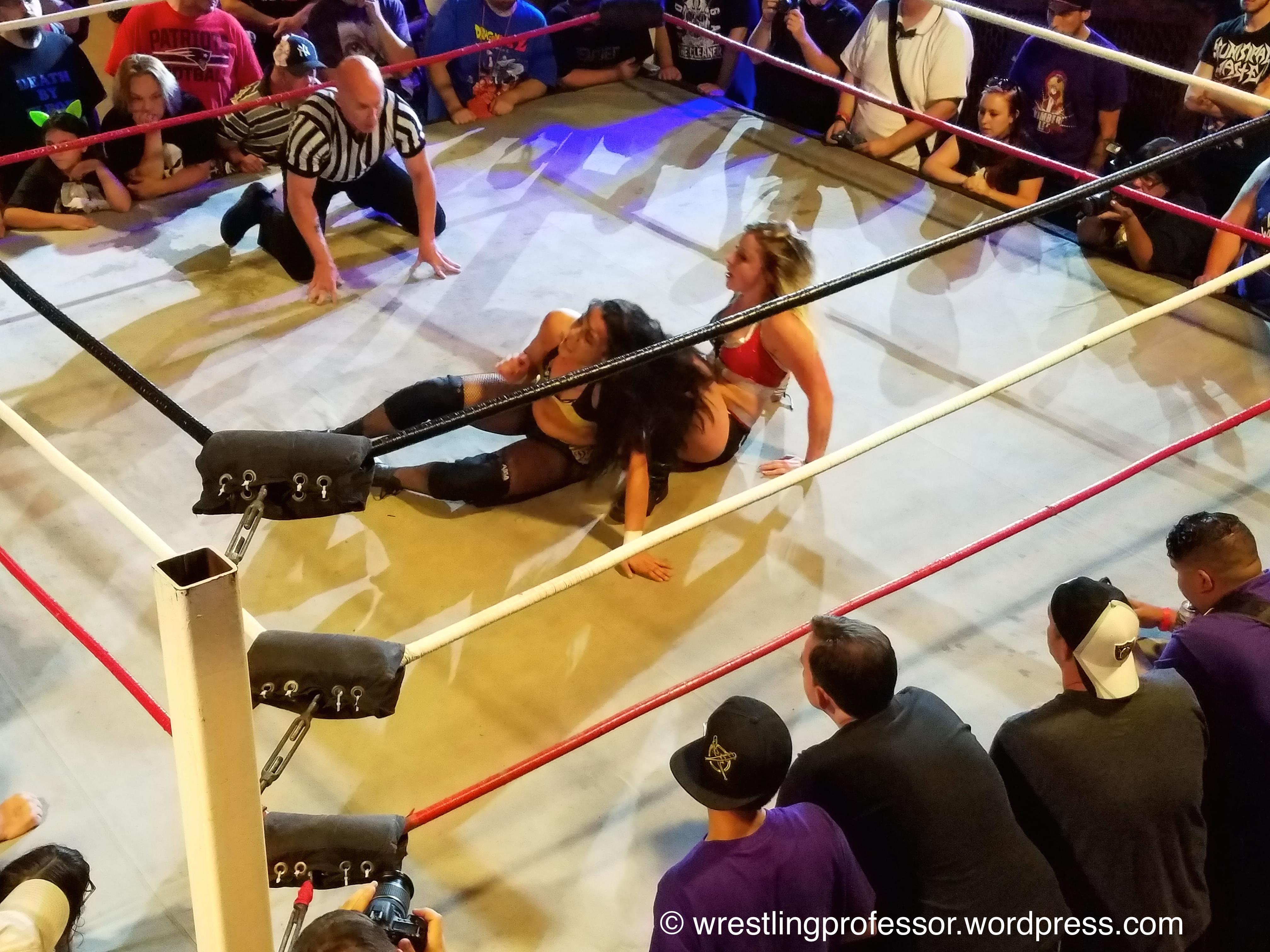 Wrestling Revolution D Exhibition : Womens wrestling revolution the professor